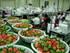 진주딸기, 베트남에 첫 수출