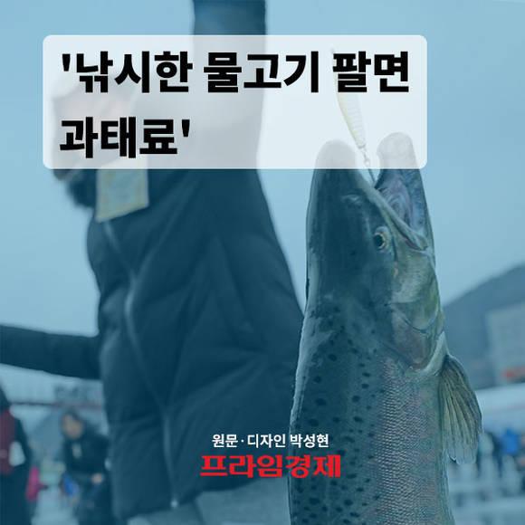 [카드뉴스] 낚시한 물고기 팔면 과…