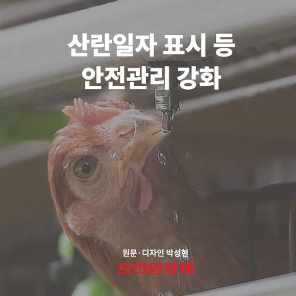[카드뉴스] 산란일자 표시 등 안전…